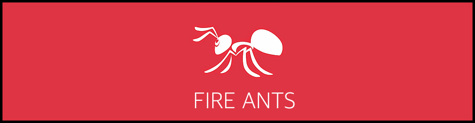 Fire Ants - OnlinePestControlCourses