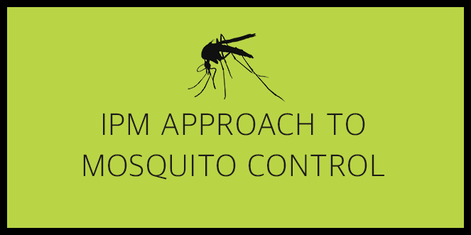Mosquito Course