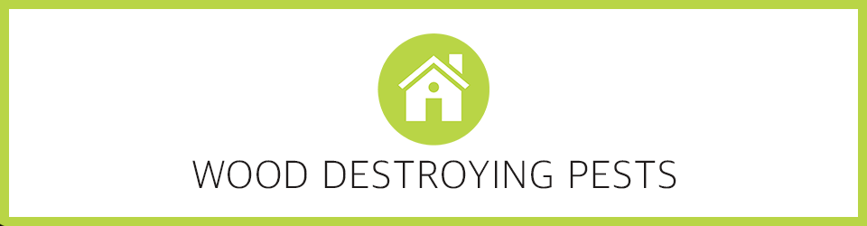 Wood Destroying Pests - OnlinePestControlCourses